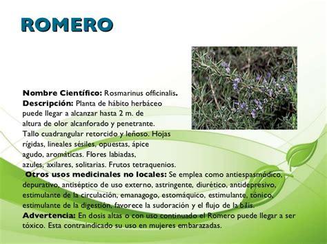 plantas medicinales descripcin y presentaci 242 n de plantas medicinales cartilla