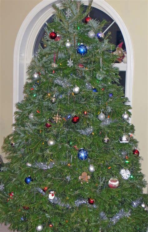 ideas to enjoy the christmas season caramel parsley