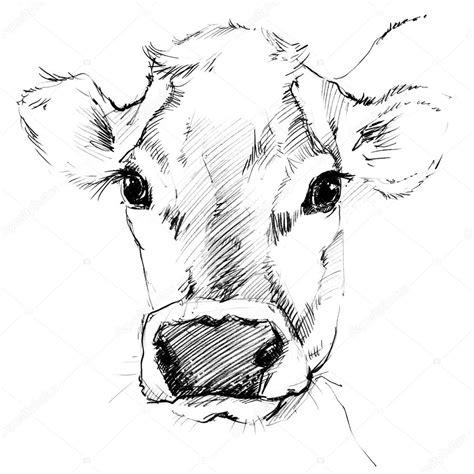 imagenes de vacas a lapiz vaca dibujo de vaca dibujo a l 225 piz vaca lechera