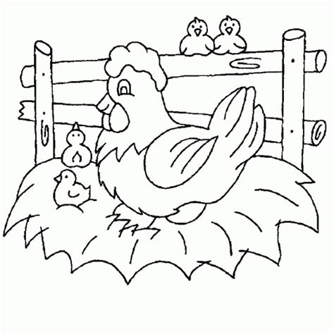imagenes para dibujar gallinas gallina para colorear