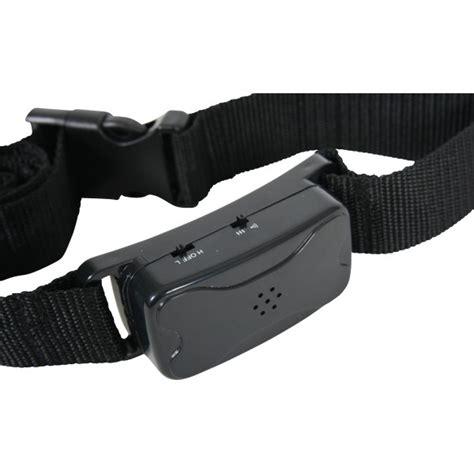 correction collar bark collar sonic or vibration correction large dogs
