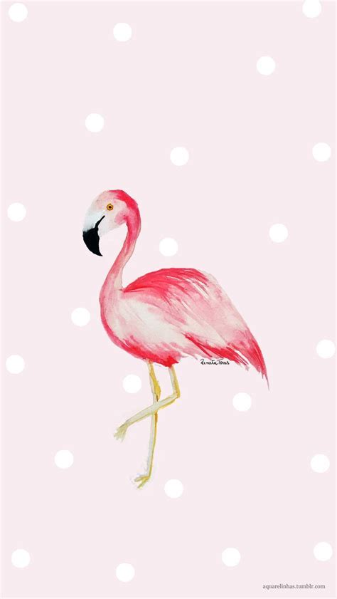 flamingo heaven wallpaper 206 best images about illustration printables on
