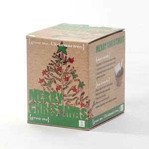 grow your own christmas tree kit alternative trees