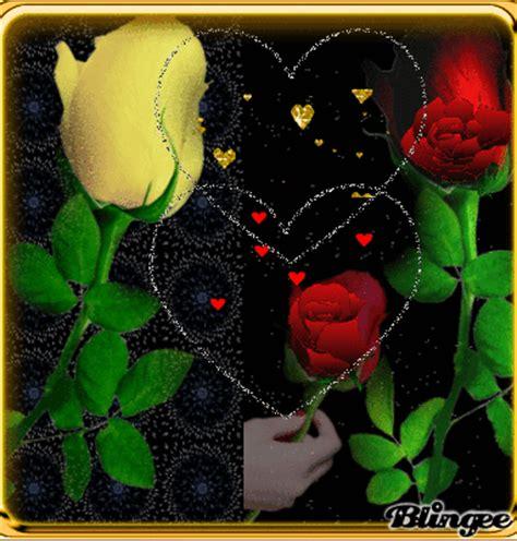 bellas imágenes in english hermosas rosas picture 118932918 blingee com
