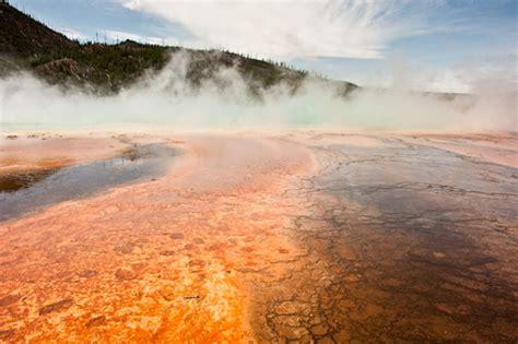 Yellowstone Brigade yellowstone national park by nate watters the photo