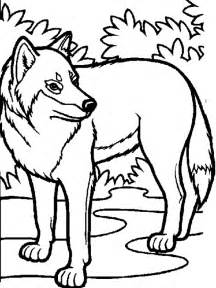 wolf pictures to color coloring now 187 archive 187 wolf coloring pages