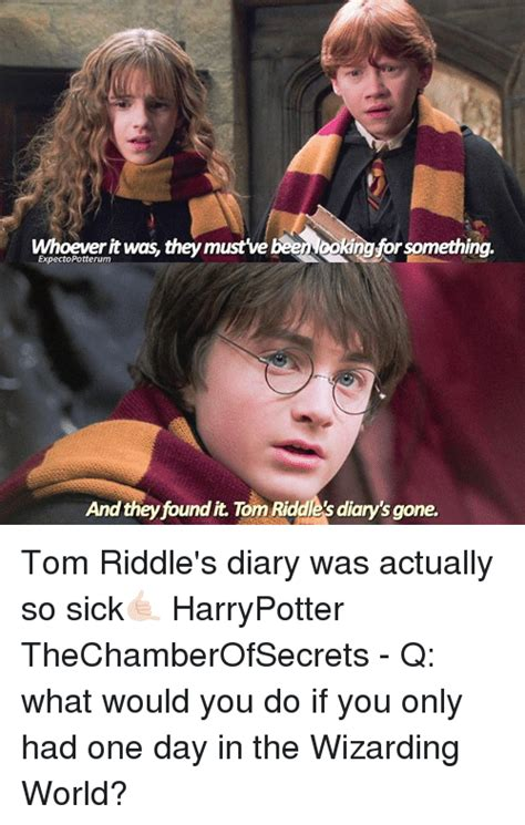 my had 7 puppies riddle 25 best memes about tom riddles diary tom riddles diary memes