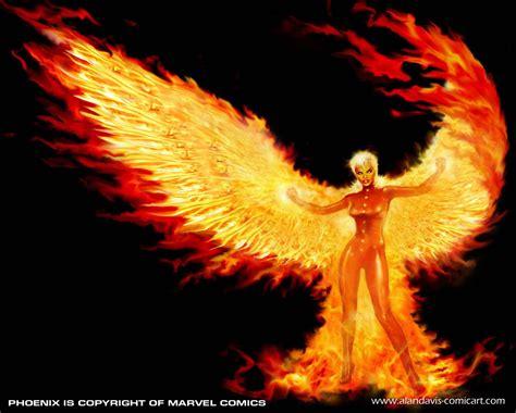 phoenix  rise phoenix bird phoenix bird