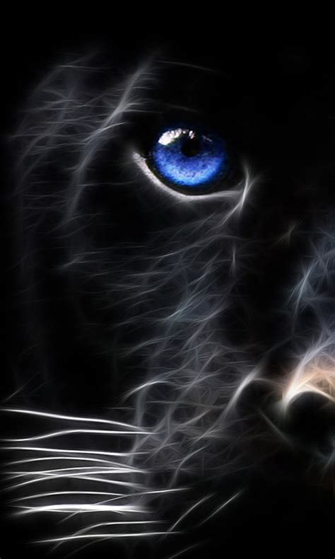 sweet cat mobile phone wallpapers 480x800 hd wallpaper there s a glorious big cat on the prowl his name is
