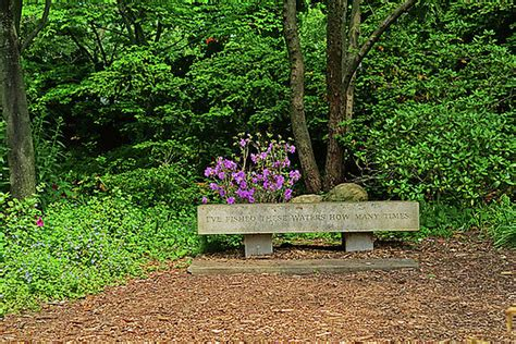 park bench rochester ny toby mcguire artwork for sale salem ma united