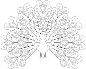 peacock coloring pages for adults beautiful peacock to color doodling