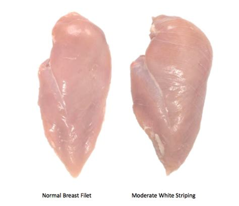 Striper White white striping what is white striping in chicken