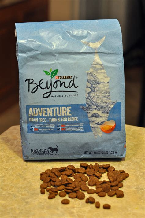 purina food kasie purina beyond food s fabulous finds