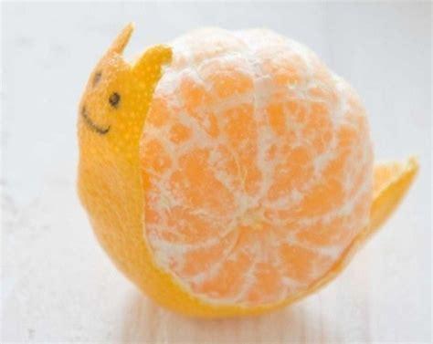 Rice Cooker Kazuki food japanese orange peel