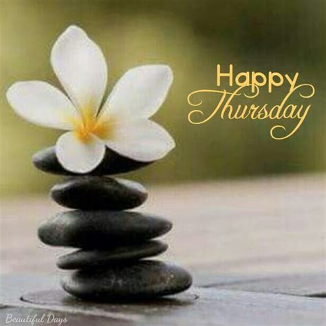 morning thursday images 390 best thursday greetings images on happy