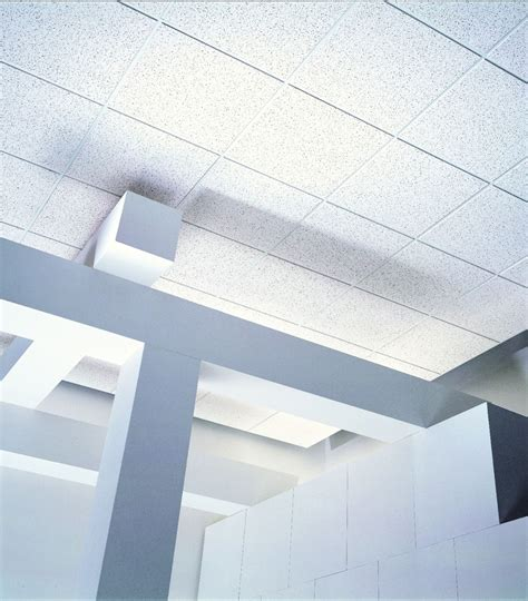 Usg Ceilings Tiles by Usg Fissured Basic Acoustical Ceiling Panels Ceiling Panels