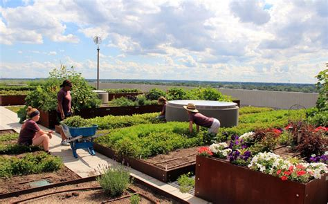 Rooftop Garden Indianapolis by The Commonground And Sky Farm At Eskenazi Health Hospital