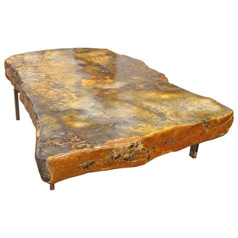 single slab petrified wood coffee table for sale at 1stdibs