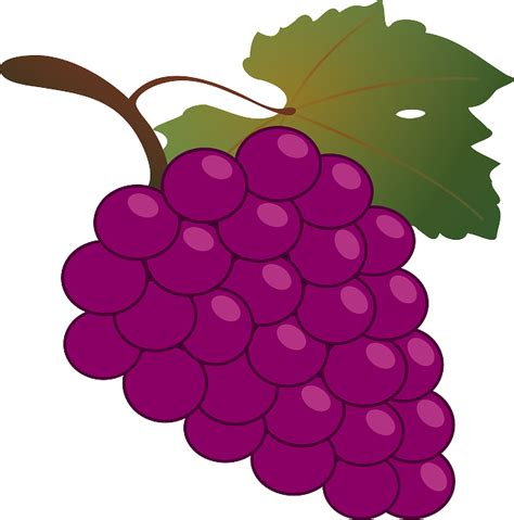 imagenes de uvas en dibujo imagenes animadas uvas imagenesbellas