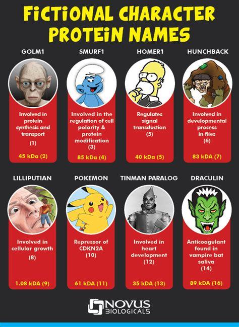 protein names 6 fictional character protein names antibody news novus