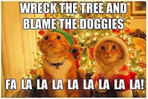 Cat Christmas Meme - top christmas memes