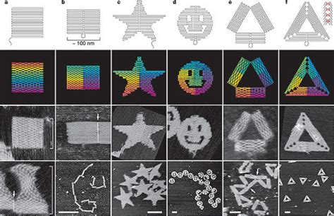 3d Dna Origami - afm key to dna origami analysis
