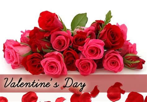 Valentines Day Flowers by Valentines Day Flowers Pictures Savingourboys Info