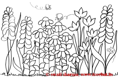 Free Coloring Pages Of Garden Flowers Coloring Pages Garden