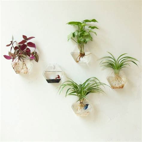 Glass Wall Vases For Flowers by 30 Unique Hanging Planters To Help You Go Green
