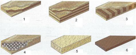nomi derivati da porta il legno principi di classificazione e prodotti