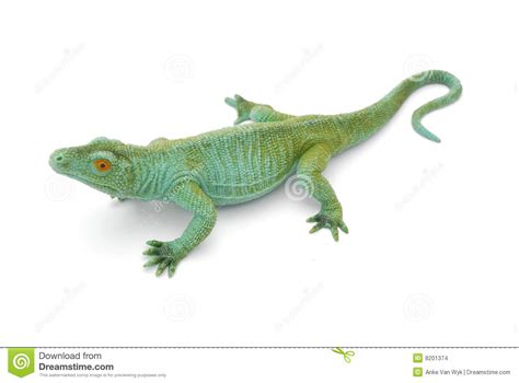 Reptile L by Reptile Stock Images Image 8201374