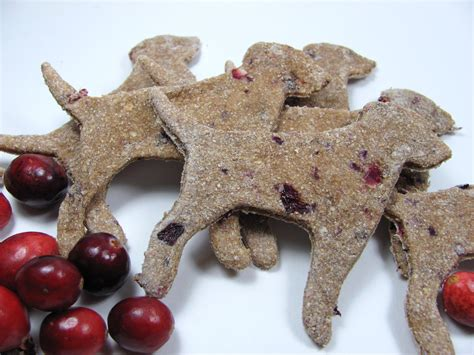 are cranberries for dogs apple cranberry treat biscuit recipe doggydessertchef