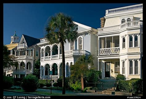 buy house charleston sc picture photo row of antebellum houses charleston south carolina usa