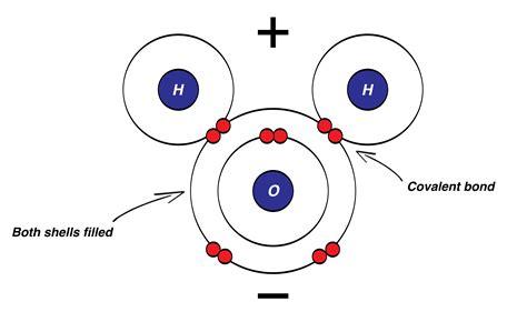 nitrogen bohr diagram nitrogen bohr rutherford diagram html imageresizertool