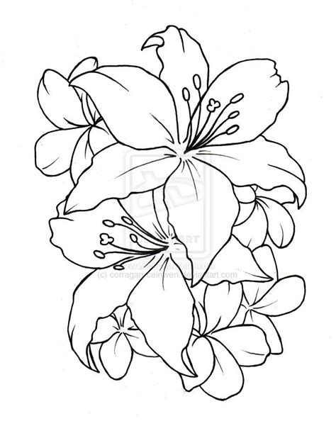 tattoo flower drawn simple flower tattoos designs jpg 773 215 969 next tattoo