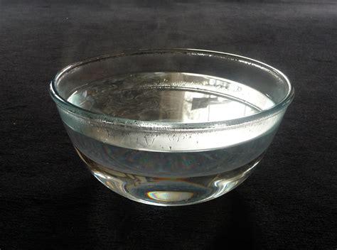 water bowl gathering david brazzeal