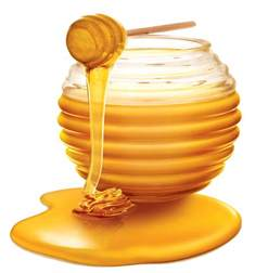 5 reasons to wash your hair with honey