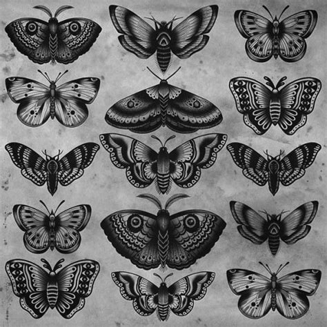 29 best traditional butterfly tattoo 29 best traditional butterfly black and grey images