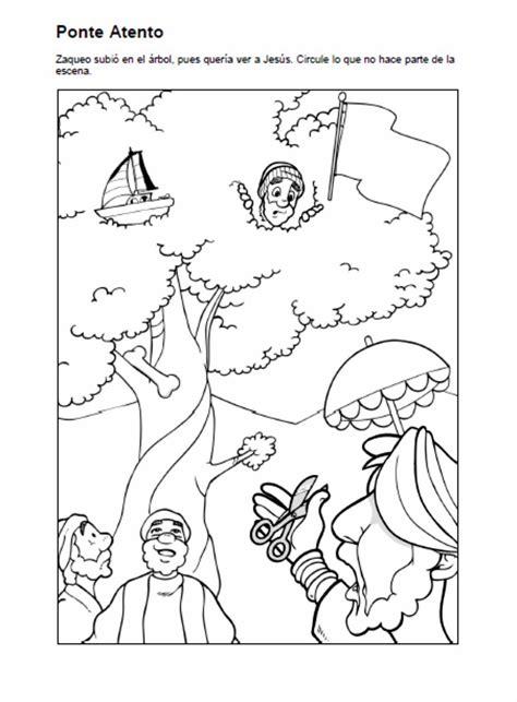 imagenes biblicas de zaqueo el renuevo de jehova zaqueo imagenes para colorear