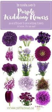 names of purple best 20 purple flower names ideas on pinterest purple