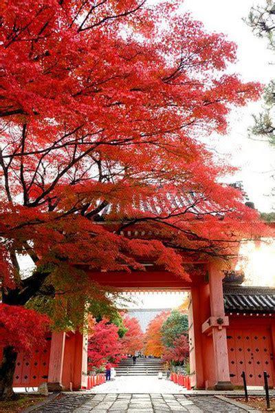 airbnb japan kyoto kyoto japan pinterest airbnb s top trending travel