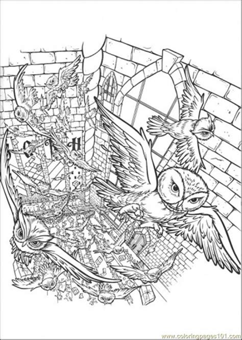 harry potter coloring pages owl free coloring pages of detailed owl