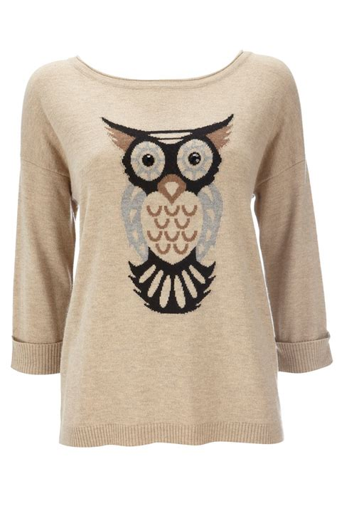 17 best ideas about owl sweater on country