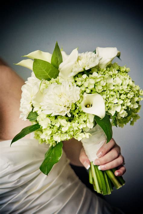 Hydrangea Wedding Flowers by Fresh And Pretty Green Hydrangea Wedding Flowers Ipunya