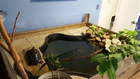 indoor ponds image gallery indoor turtle pond