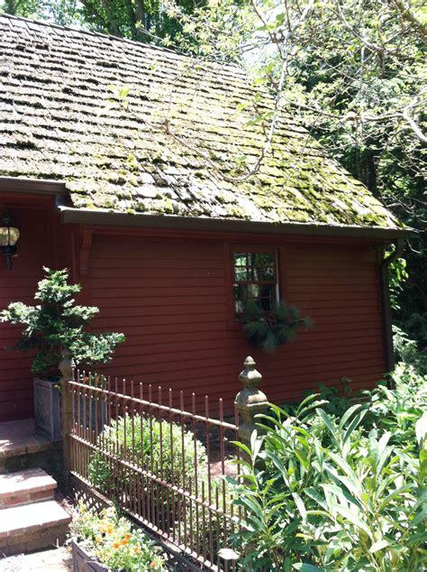 plural of trellis visiting a botanical trail by jon carloftis and rockcastle
