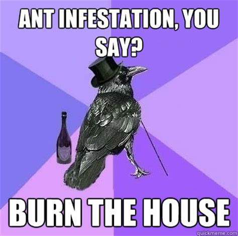 Ants Meme - ant infestation you say burn the house rich raven