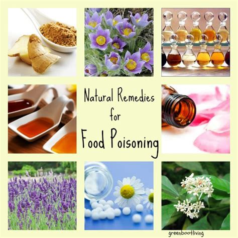 food poisoning remedies for food poisoning greenbootliving