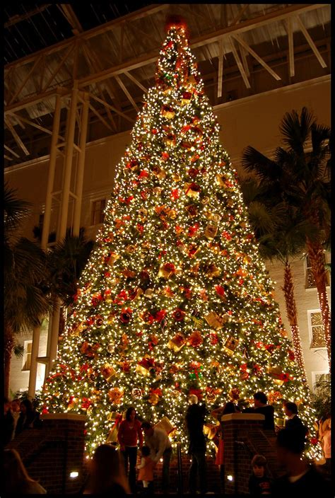 christmas at the gaylord opryland hotel nashville been