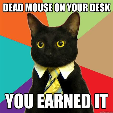 Office Cat Meme - dead mouse on your desk you earned it business cat